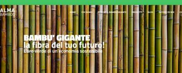 Alma bamboo